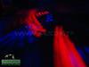 ''Purple Haze''-04-17-09-By ''cHuCkLeS'' (421)