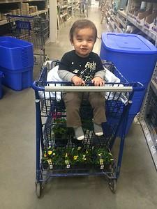 Cart ride!