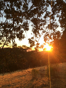 Sunset at Henry Coe