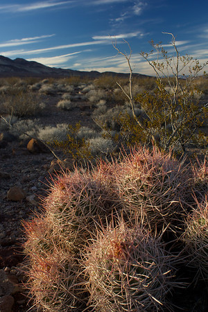 Death Valley, Nov 2013