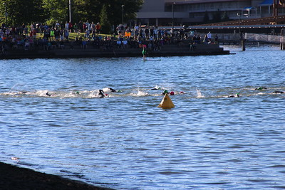 Random swimmers