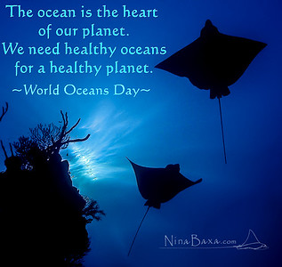 World Oceans Day - 8June.