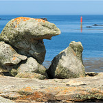 Rocks  -  Island of Sein  -  Brittany