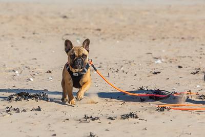 Re-Anh, 7 mois, séeance éducative sur la plage