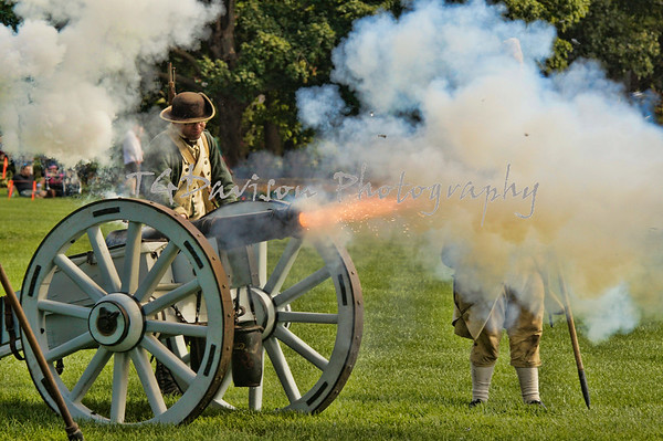 Cantigny Rev War 2015