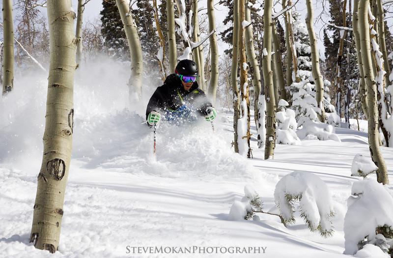 IMAGE: http://www.stevemokanphotography.com/Re/Beaver-Creek-Skiing-Jan-12/i-XqQfP29/1/L/BeaverCreek12-15-L.jpg