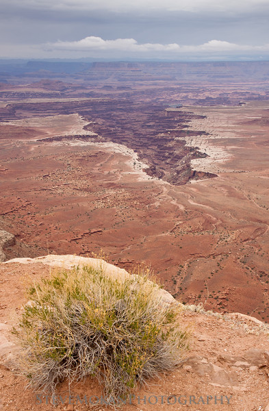 From the Grand View Overlook, you can look into the Needles and Maze sections of Canyonlands National Park.  To get to these locations requires several hours of 4x4 driving.