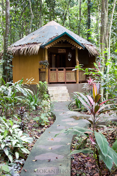 Our bungalow for the week at Korrigan Lodge in Punta Uva.  Right smack dab in the middle of the jungle.  We awoke to howler monkeys every morning at 5am.