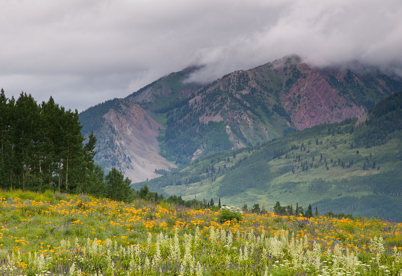 Avery Peak, shrouded in clouds, overlooks the Snodgrass trail.