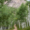 Almost to the Crystal Mill, meandering through the aspens.