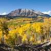The view from the Dark Canyon Trail off Kebler Pass, just west of Crested Butte.
