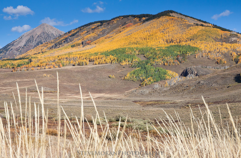 Gothic Peak in the background with Snodgrass Mountain covered with aspens.  This picture was taken from Washington Gulch Road.