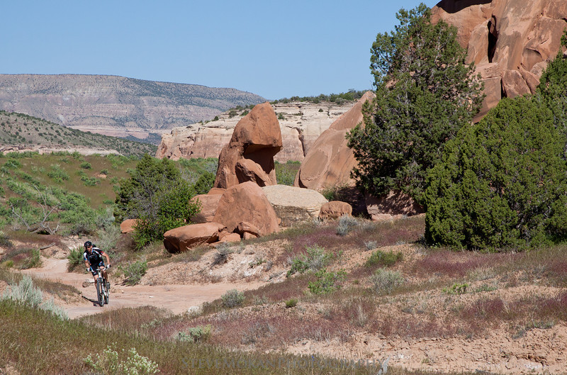Very cool Moab-like rock formations are everywhere around Horsethief and Mary's Loop.
