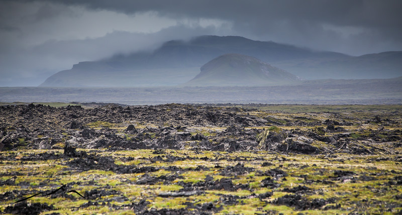 This image gives you a good idea of how rough the landscape truly is in spots.  For miles and miles, all you see is moss-covered lava from thousands of years ago.
