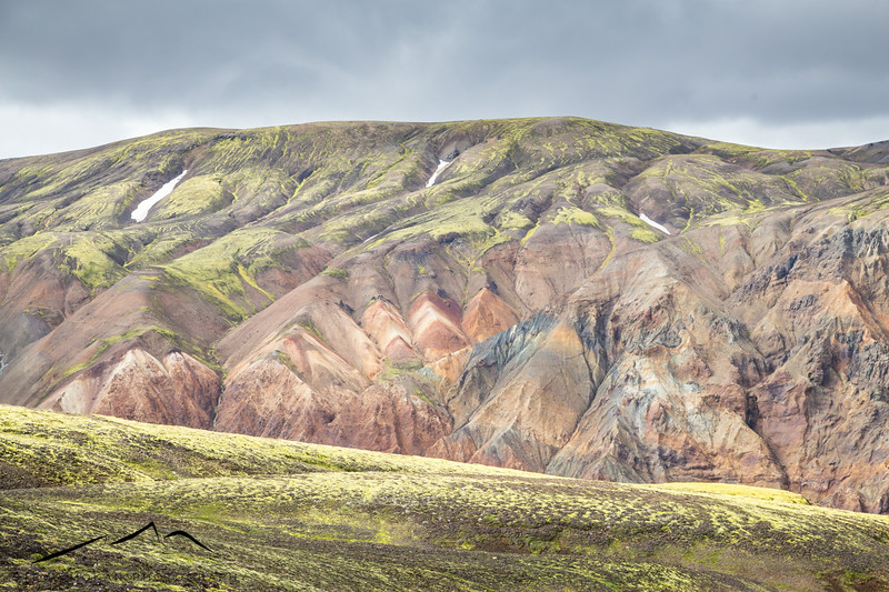 I thought the ridges and bright colors in this shot made for an interesting composition.