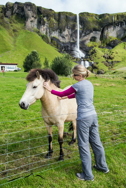 The people that owned the property had a couple of beautiful Icelandic horses.  Sarah got to pet an Icelandic horse in front of a waterfall in Iceland.  Dream completed.