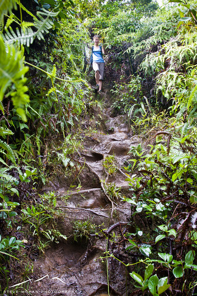 Coming down the Okolehao Trail... yes, it's as steep as it looks and it was even slicker.