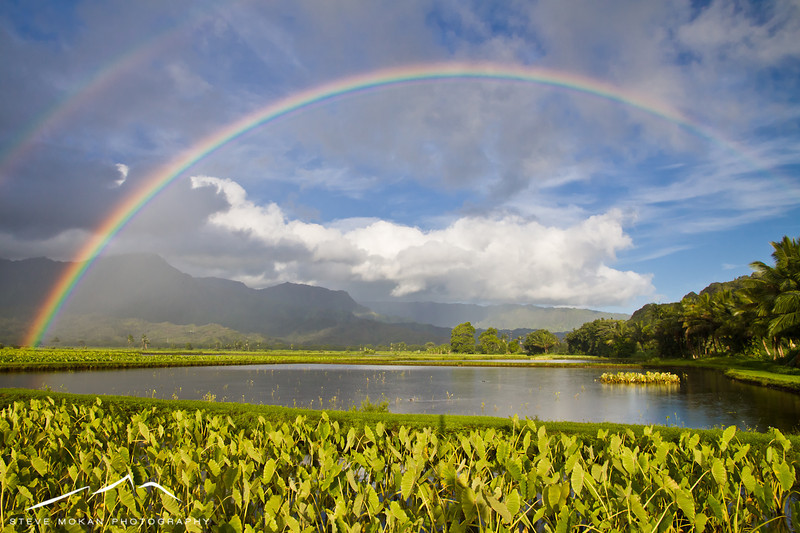 One of my favorite pictures.... a double rainbow over the Hanalei taro fields.
