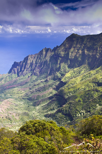 This is the world famous Kalalau Ridge from the top lookout in Koke'e State Park.  I don't think pictures do it justice- the valley floor is over FOUR THOUSAND feet below.