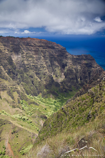 We hiked the Awa'awapuhi Trail, which started at 4100 feet and dropped to around 2500 feet at this lookout.  Again, pictures don't do justice to this spot- this is one of the most beautiful spots on earth.