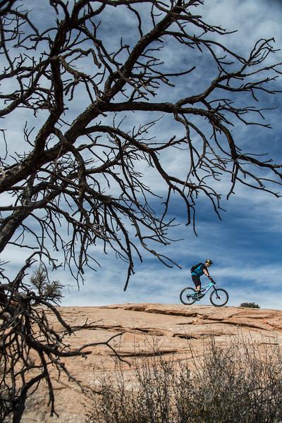 IMAGE: http://www.stevemokanphotography.com/Re/Moab-Mountain-Biking-Nov-15/i-qwXjsts/0/L/MoabTrip-38-L.jpg
