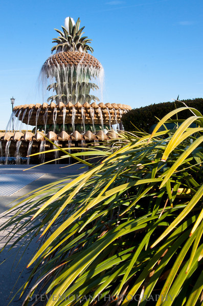 Another picture of the Pineapple Fountain in the Waterfront Park, in Charleston.