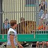 Thanks to Rick Woodall for these photos of Peru's Circus Parade, which was July 19.