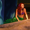 "Ariel sings ""Part of Your World"" in Tipton COmmunity Theatre's upcoming Production of ""Little Mermaid Jr""  show dates are Feb 22,23 & 24 at the Tipton High School Auditorium  Friday and Saturday Evening at 7:30 Saturday and Sunday afternoons at 2:00.  Call (765) 675-1682 for information. <br /> <br /> Photographer's Name:  <br /> Photographers City and Country: ,"