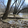 Wildcat Creek Saturday, March 15th<br /> <br /> Photographer's Name: Markus Naegeli<br /> Photographer's City and State: Kokomo, IN