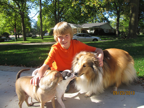 Brennon Durham enjoying play time with family dogs<br /> <br /> Photographer's Name: jennifer miller<br /> Photographer's City and State: kokomo, IN