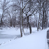 #holidaycard<br /> <br /> Photographer's Name: Sandy Wheeler<br /> Photographer's City and State: Kokomo, IN