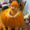 my little 'punkin'<br /> <br /> Photographer's Name: Andrea Wyant<br /> Photographer's City and State: Windfall, IN