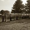 drought 2012<br /> <br /> Photographer's Name: Amanda Baldwin<br /> Photographer's City and State: Kokomo, IN