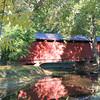 Highland Park Bridge<br /> <br /> Photographer's Name: lori ligon<br /> Photographer's City and State: kokomo, IN