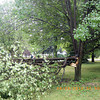 storm damage Marlene and Buddy Meeks home<br /> <br /> Photographer's Name: mary dodd<br /> Photographer's City and State: kokomo, IN