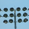 New lights at LHS football field<br /> <br /> Photographer's Name: Robert Zimmerman<br /> Photographer's City and State: Logansport, IN
