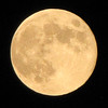 7/3/12  Full Moon<br /> <br /> Photographer's Name: Ammie Avalle<br /> Photographer's City and State: Walton, IN
