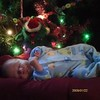 Jake's 1st Christmas<br /> <br /> Photographer's Name: DIXIE BENSON<br /> Photographer's City and State: clinton, IA
