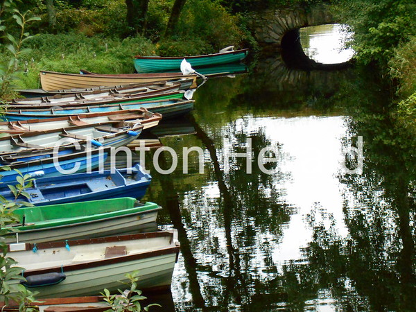 Rowboats<br /> <br /> Photographer's Name: Lori Callahan<br /> Photographer's City and State: Clinton, IA