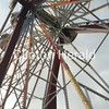 Summer Ferris Wheel<br /> <br /> Photographer's Name:  <br /> Photographers City and Country: ,