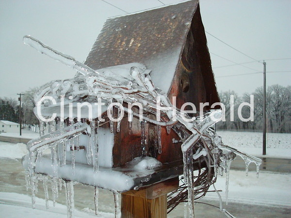 Icy Birdhouse<br /> <br /> Photographer's Name: Tami Lampe<br /> Photographer's City and State: Clinton, IA
