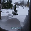 Dayna Turner 243-6489<br /> <br /> Photographer's Name: Dayna Turner<br /> Photographer's City and State: Clinton, IA
