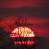 A nice, mid-April sunset.<br /> <br /> Photographer's Name: Harry Van Noy<br /> Photographer's City and State: Lafayette Township, Ind.