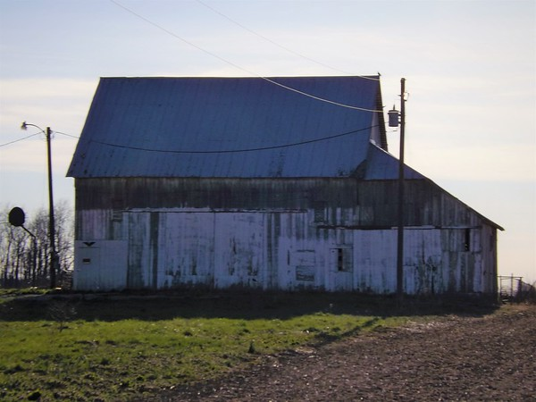 Barns of Madison County.<br /> <br /> Photographer's Name: J.R. Rosencrans<br /> Photographer's City and State: Alexandria, Ind.