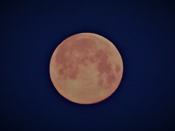 Full moon  in April.<br /> <br /> Photographer's Name: J.R. Rosencrans<br /> Photographer's City and State: Alexandria, Ind.