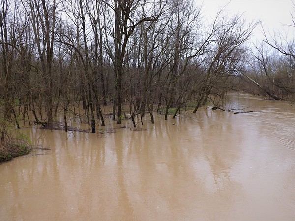 Flood waters of Killbuck Creek in Richland Township.<br /> <br /> Photographer's Name: J.R. Rosencrans<br /> Photographer's City and State: Alexandria, Ind.