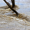 Rushing water along the bank at Mounds Park from the out of banks river.<br /> <br /> Photographer's Name: Jerry Byard<br /> Photographer's City and State: Anderson, Ind.