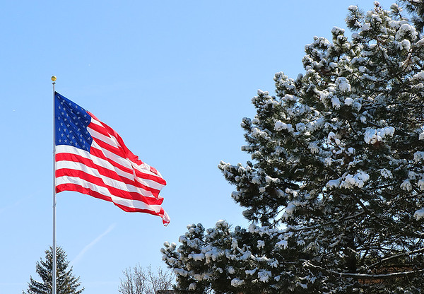 A large flag and a snow laden tree after our April snow.<br /> <br /> Photographer's Name: Jerry Byard<br /> Photographer's City and State: Anderson, Ind.