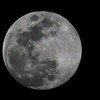 Friday night's beautiful full moon.<br /> <br /> Photographer's Name: Jerry Byard<br /> Photographer's City and State: Anderson, Ind.