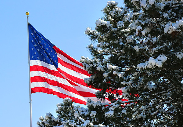 Large flag and a snow laden tree.<br /> <br /> Photographer's Name: Jerry Byard<br /> Photographer's City and State: Anderson, Ind.
